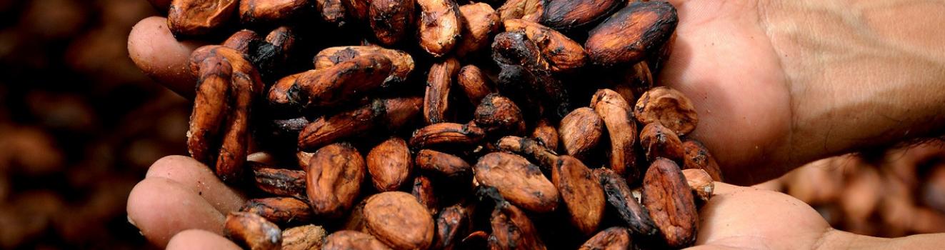 Cioccolatini pregiati